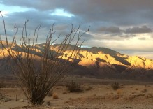 The Perfect Anza-Borrego Overview